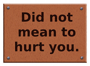 Did Not Mean To Hurt You ~ Aplology Quotes