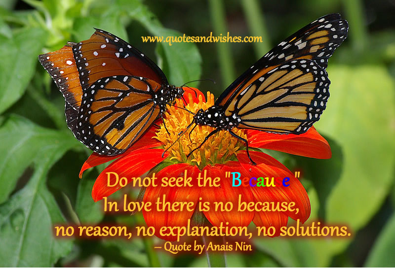 "Do Not Seek The ""Because"" In Love There Is No Because, No Reason, No Explanation, No Solutions"