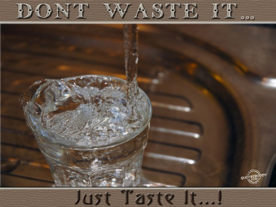 Don't Waste It, Just Taste It!