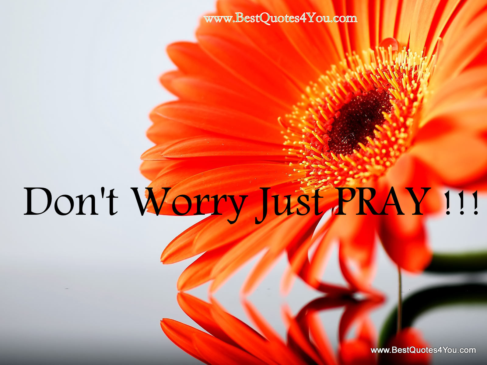 Don't Worry Just Pray!!!