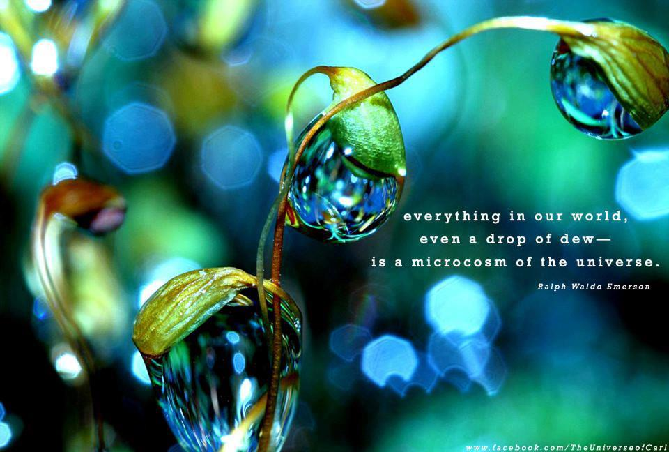 Everything In Our World, Even A Drop Of Dew Is A Macrocosm Of The Universe