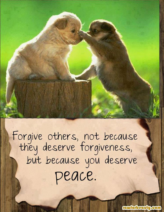 Forgive Others, Not Because They Deserve Forgiveness, But Because You Deserve Peace ~ Apology Quote