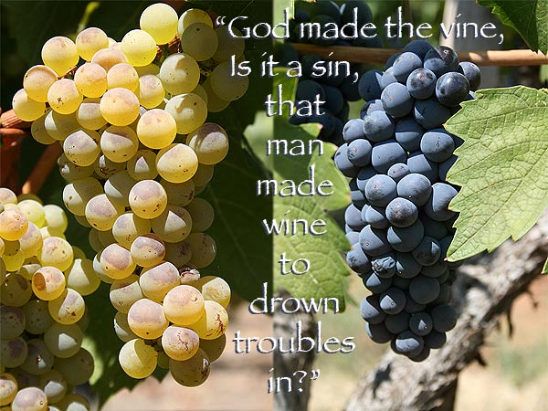 """God Made The Vine, Is It a Sin, That Man Made Vine To Down Troubles In!"""