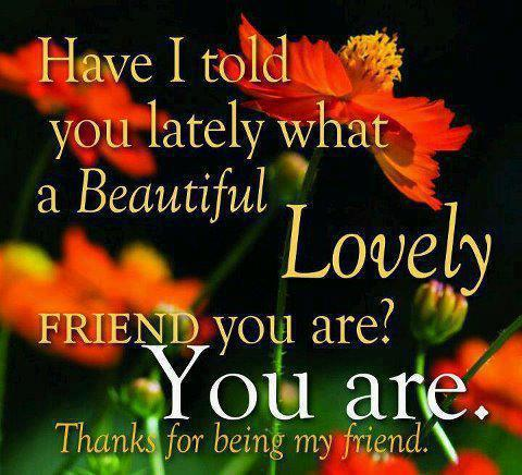 Have I Told You Lately What a Beautiful Lovely Friend You Are! You Are. Thanks For Being My Friend