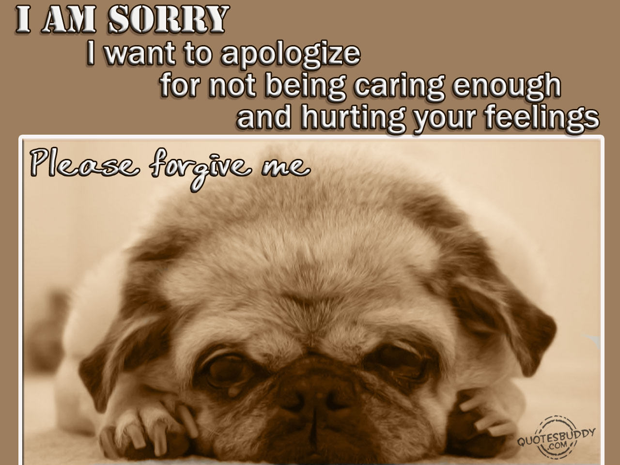 I Am Sorry I Want To Apologize For Not Being Caring Enough And Hurting Your Feelings ~ Aplology Quotes