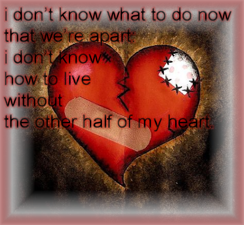 I Don't Know What To Do Now That We're Apart.  I Don't Know How To Live Without The Other Half Of My Heart