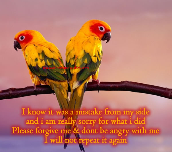 I Know It Was a Mistake From My Side And I Am Really Sorry For What I Did Please Forgive Me & Dont Be Angry With Me I Will Not Repeat It Again ~ Apology Quote