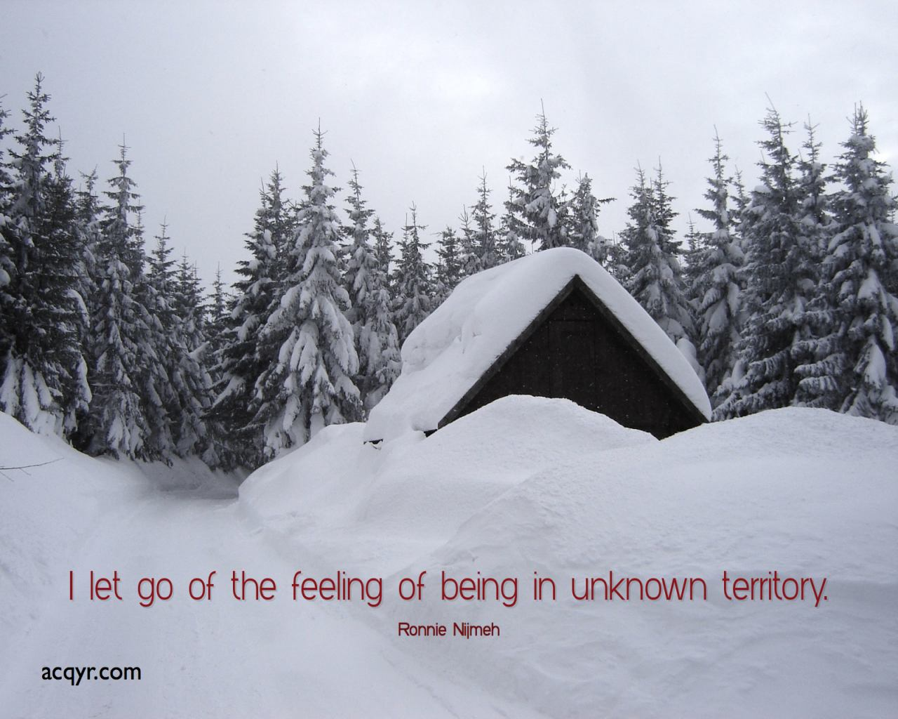 I Let Go Of The Feeling Of Being In Unknown Territory