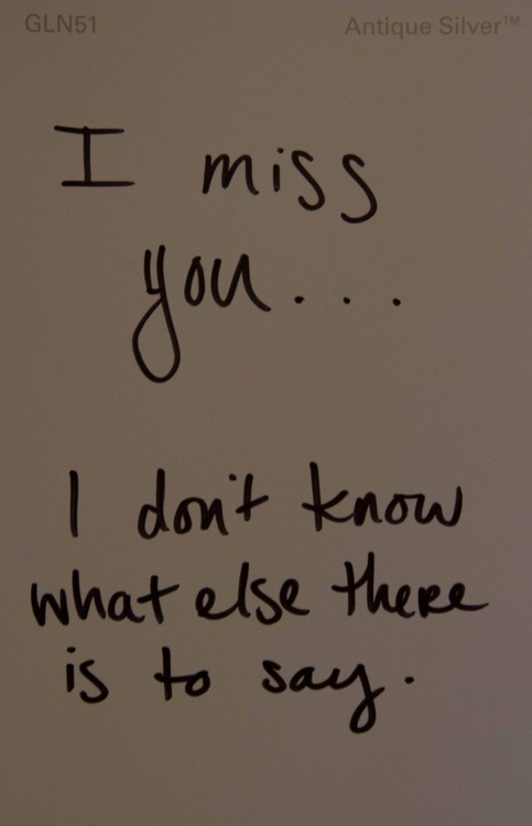 I Miss You, I Don't Know What Else There Is To Say