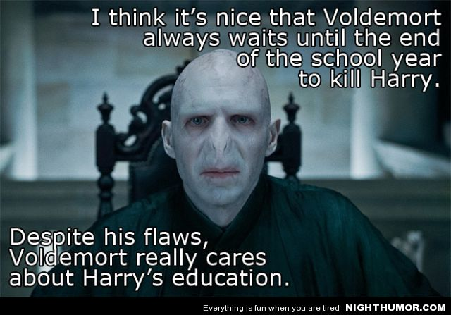 I Think It's Nice That Voldemort Always Waits Until The End Of The School Year To Kill Harry. Despite His Flaws, Voldemort Really Cares About Harry's Education