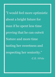 """""""I Would Feel More Optimistic About A Bright Future For Man If He Spent Less Time Proving That He Can Outwit Nature And More Time Tasting Her Sweetness And Respecting Her Seniority"""""""