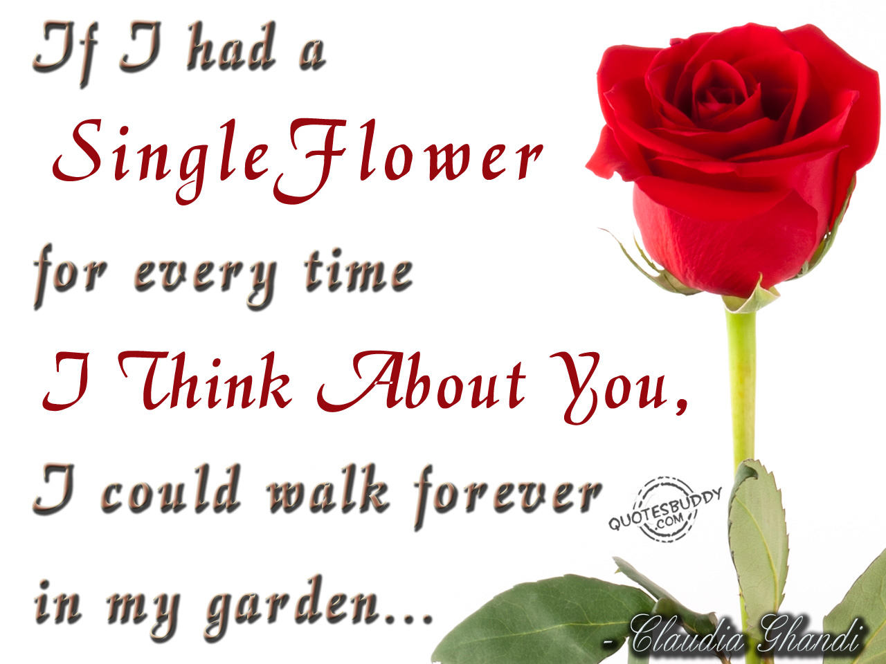 If I Had a Single Flower For Every Time I Think About You, I Could Walk Forever In My Garden