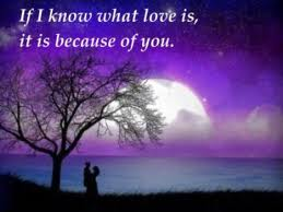 If I Know What Love Is, It Because of You ~ Apology Quote