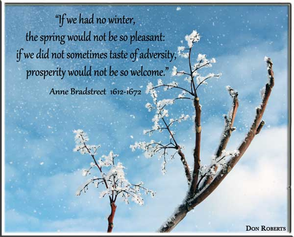 """If We Had No Winter, The Spring Would Not Be So Pleasant. If We Did Not Sometimes Taste Of Adversity Prosperity Would Not Be Welcome"""