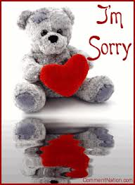 I'm Sorry Teddy Bear Picture