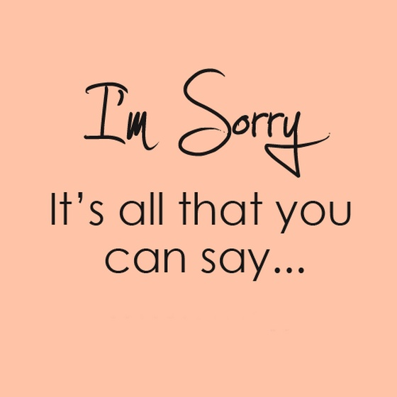 I'm Sorry It's All That You Can Say ~ Apology Quote
