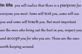 In Life You Will Realize That There Is a Purpose For Everyone You Meet, Some Will Test You, Some Will Use You And Some Will Teach You