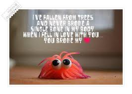 I've Fallen From Trees And Never Broke A Single Bone In My Body When I Fell In Love With You, You Broke My Heart