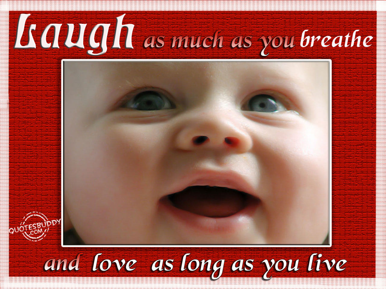 Laugh As Much As You Breathe And Love As Long As You Live ~ Aplology Quotes