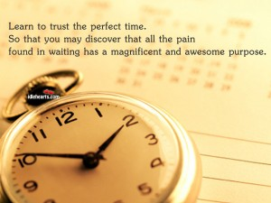 Learn To Trust The Perfect Time. So That You May Discover That All The Pain Found In Waiting Has A Magnificent And Awesome Purpose