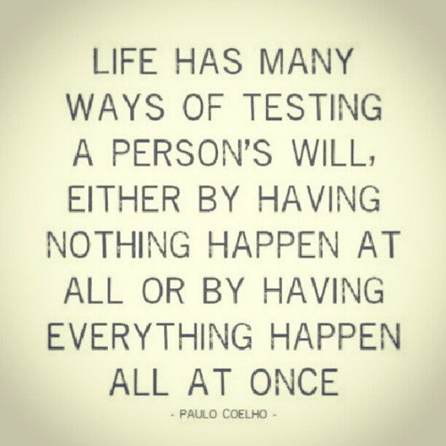 Life Has Many Ways Of Testing A Person's Will, Either By Having Nothing Happen At All Or By Having Everything Happen All At Once