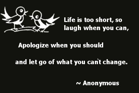Life Is Too Short, So Laugh When You Can, Apologize When You Should And Let Go Of What You Can't Change ~ Apology Quote