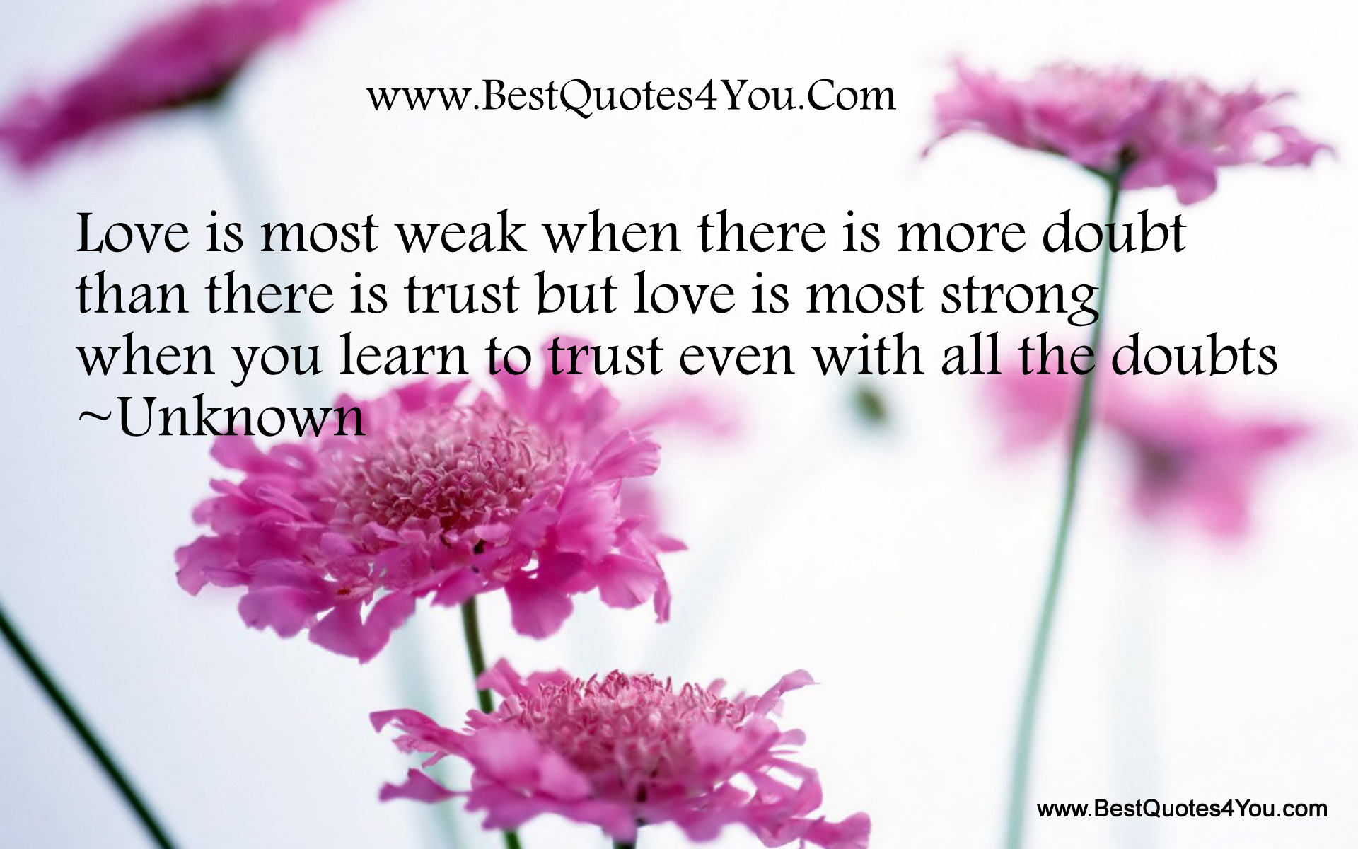 Love Is Most Weak When There Is More Doubt Than There Is Trust But Love Is Most Strong Which You Learn To Trust Even With All The Doubts