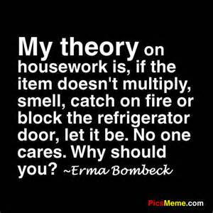 My Theory On Housework Is, If The Item Doesn't Multiply, Smell, Catch On Fire Or Block The Refigerator Door, Let It Be. No One Cares. Why Should You!