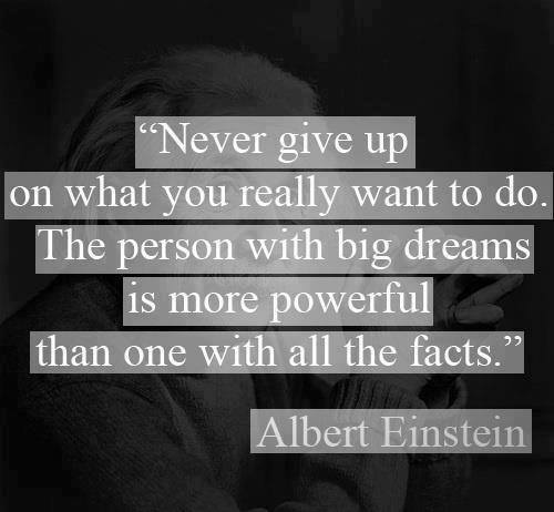 """Never Give Up On What You Really Want To Do. The Person With Big Dreams Is More Powerful Than One With All The Facts"