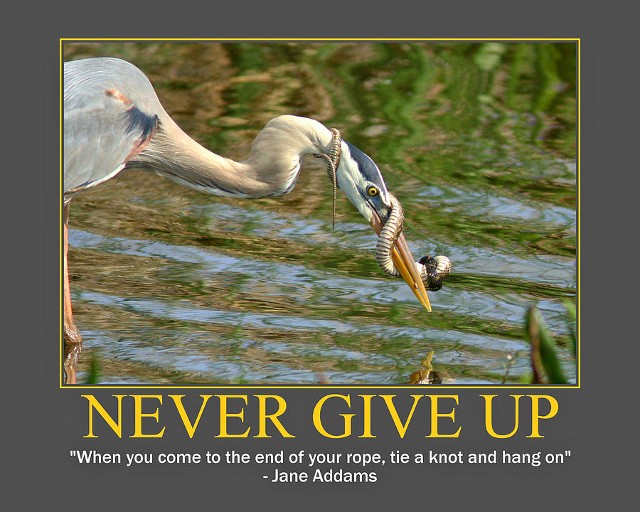 "Never Give Up, ""When You Come To The End Of Your Rope, Tie A Knot And Hang On"""