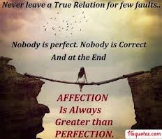 Never Leave a True Relation For Few Faults. Nobody Is Perfect. Nobody Is Correct And At The End Affection Is Always Greater Than Perfection