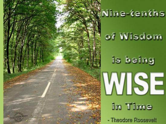 Nine Tenths Of Wisdom Is Being Wise In Time