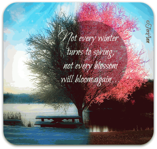 Not Every Winter Turns To Spring, Not Every Blossom Will Bloom Again