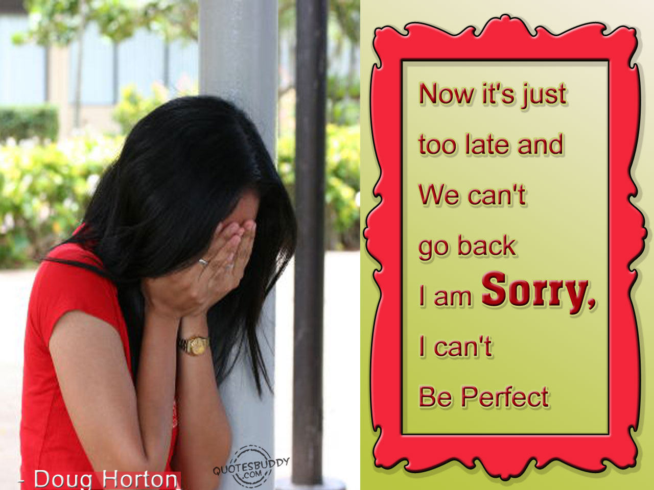 Now It's Just Too Late And We Can't Go Back I Am Sorry. I Can't Be Perfect ~ Aplology Quotes