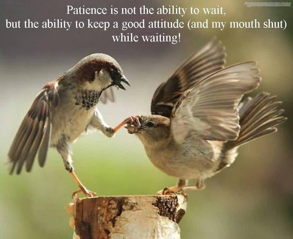 Patience Is Not Ability To Wait, But The Ability To Keep A Good Attitude While Waiting!