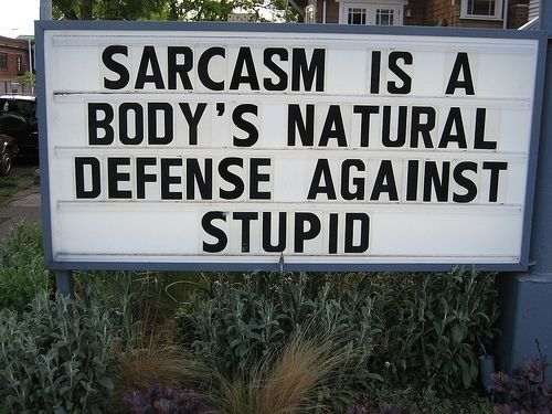 Sarcasm Is A Body's Natural Defense Against Stupid