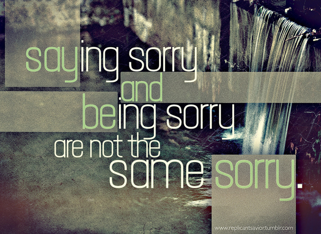 quotes about being sorry - photo #26