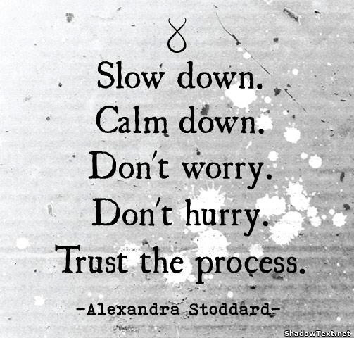 Slow Down. Calm Down. Don't Worry. Don't Hurry. Trust The Process