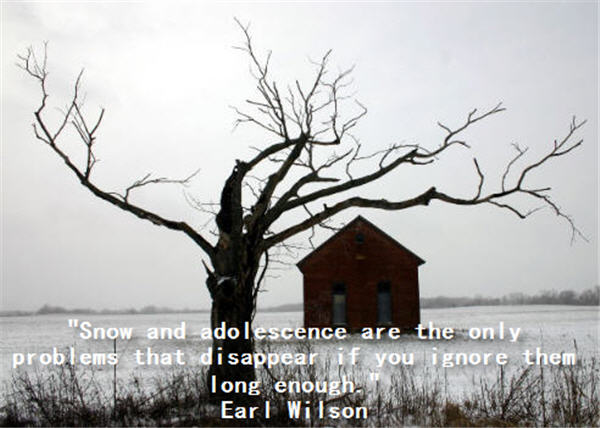 """Snow And Ado I Escence Are The Only Problems That Disappear If You Ignore Them Long Enough"""