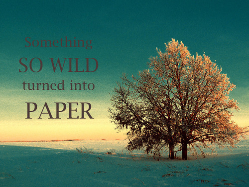 Something So Wild Turned Into Paper ~ Apology Quote