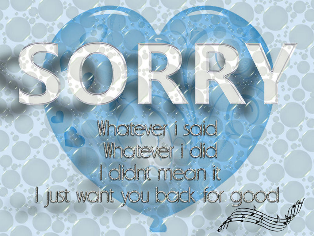 Sorry Whatever I Said Whatever I Did I Didn't Mean It, I Just Want You Luck For Good ~ Apology Quote