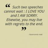 """ Such Two Speeches Cannot Wait, I Love You And I Am Sorry. Elsewise, You May Live With Regrets To The End "" ~ Apology Quote"