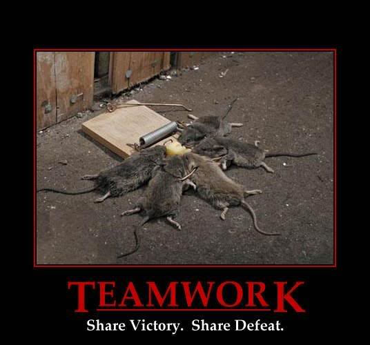 Teamwork, Share Victory, Share Defeat