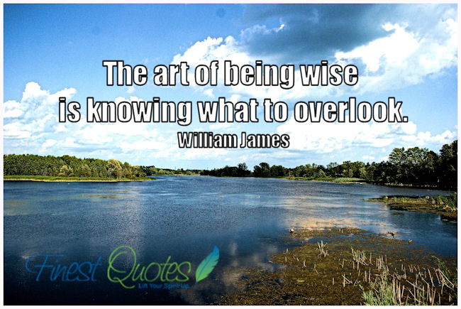 The Art Of Being Wise Is Knowing What To Overlook