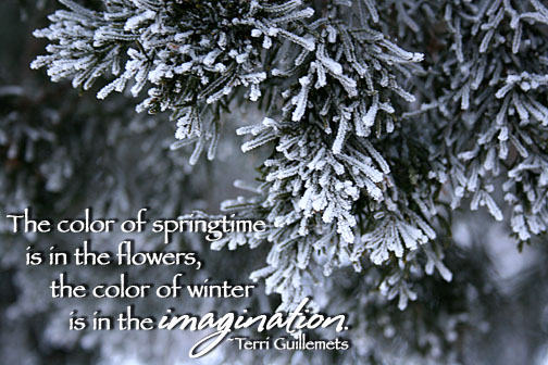 The Color Of Springtime Is In The Flowers, The Color Of Winter Is In The Imagination