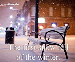 The First Snow Fall Of The Winter