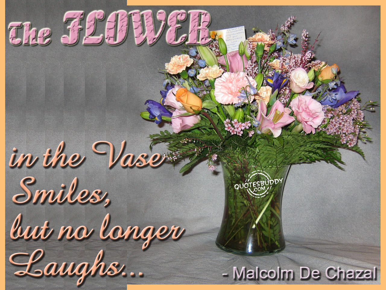 The Flower In The Vase Smiles But No Longer Laughs