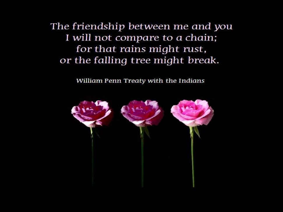 The Friendship Between Me And You I Will Not Compare To a Chain, For That Rains Might Rust, Or The Falling Tree Might Break
