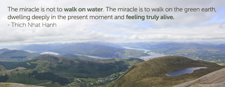 The Miracle Is Not Walk On Water. The Miracle Is To Walk On The Green Earth, Dweling Deeply In The Present Moment And Feeling Truly Alive