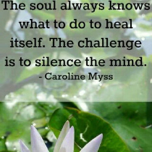 The Soul Always Knows What To Do To Heal Itself. The Challenge Is To Silence The Mind
